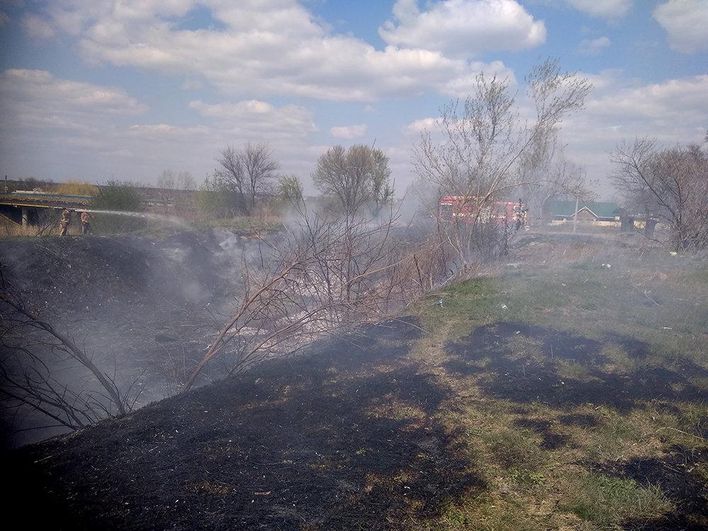 За сутки спасатели Николаевщины дважды тушили пожары в экосистемах, фото-2