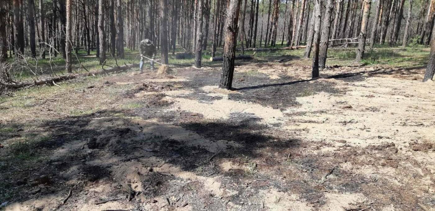 В Николаевской области на открытой территории горела хвойная подстилка и сухая трава, фото-1