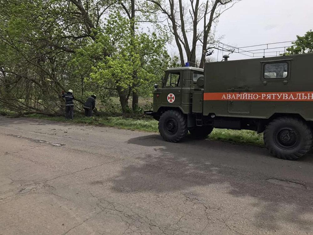 Из-за сильных порывов ветра в Николаеве деревья упали на детскую площадку, - ФОТО, фото-3