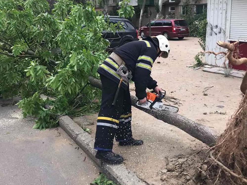 Из-за сильных порывов ветра в Николаеве деревья упали на детскую площадку, - ФОТО, фото-4