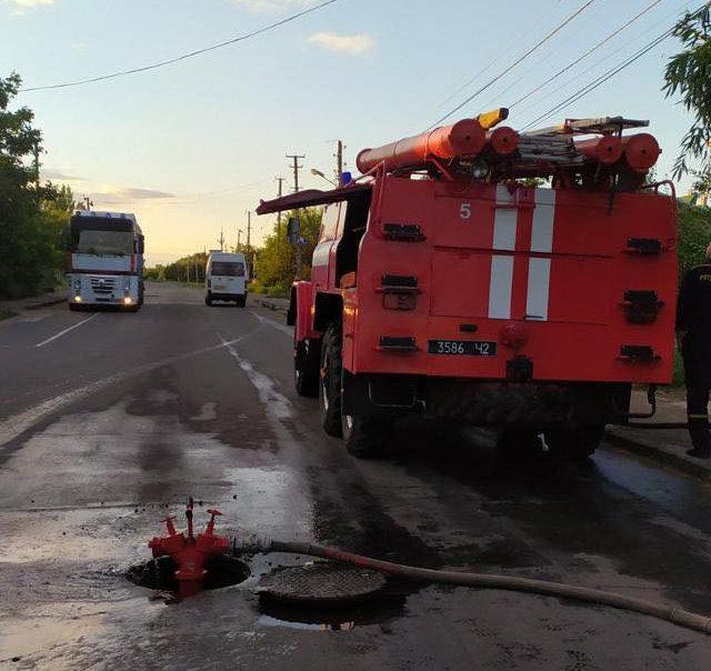 В Николаеве подожгли Балабановский лес, - ФОТО, фото-2