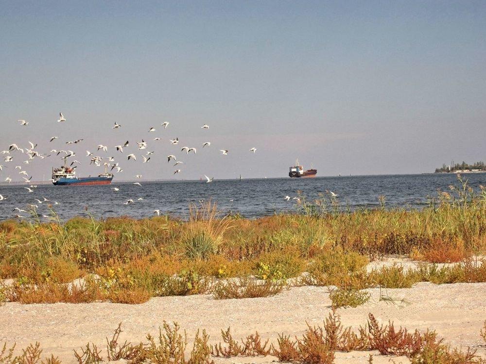 Лучше Турции: где отдохнуть на море в пределах Николаевщины , фото-12