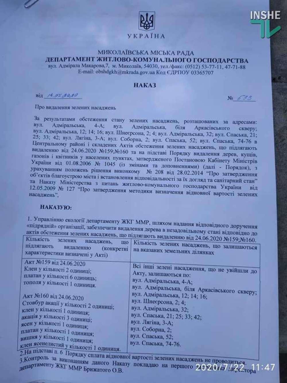 В Николаеве спилили живые деревья по документам гнилых, - ВИДЕО, фото-5