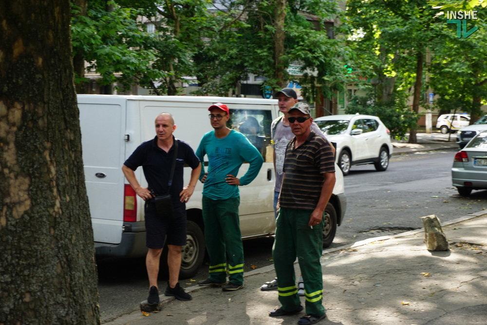 В Николаеве спилили живые деревья по документам гнилых, - ВИДЕО, фото-13