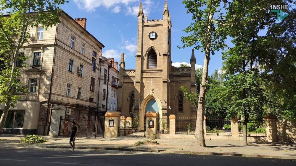 В Николаеве спилили живые деревья по документам гнилых, - ВИДЕО, фото-17