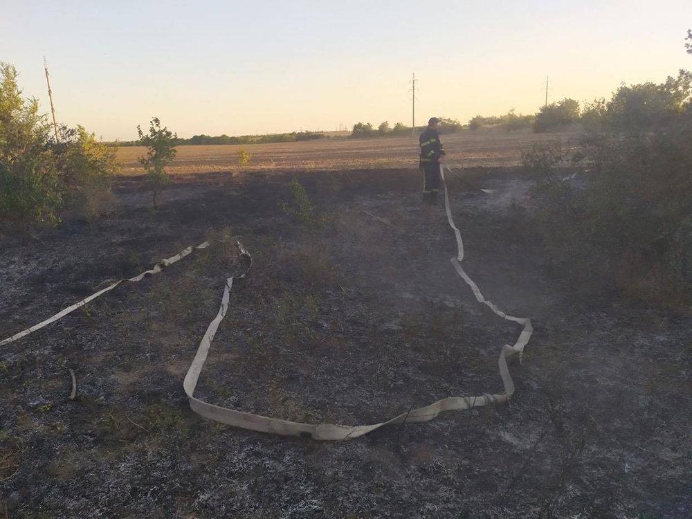 Массовые пожары на Николаевщине: причиной служит поджог, - ФОТО, фото-5