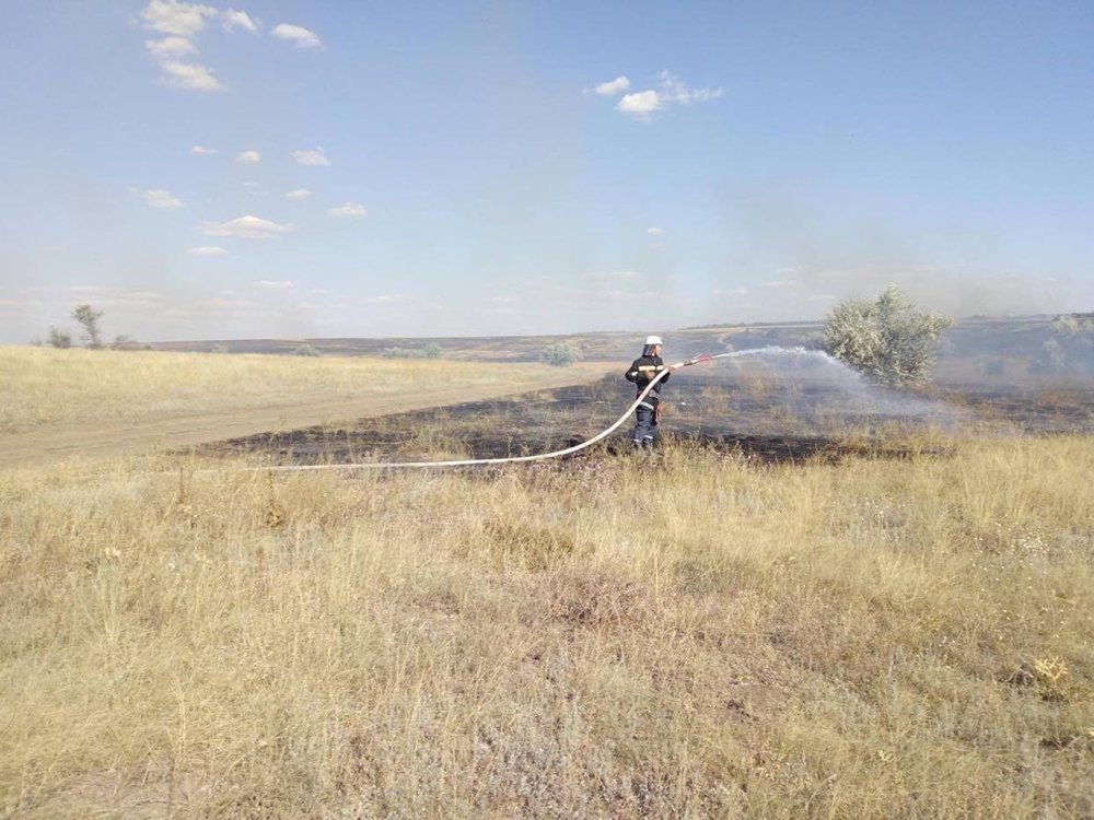 Массовые пожары на Николаевщине: причиной служит поджог, - ФОТО, фото-4