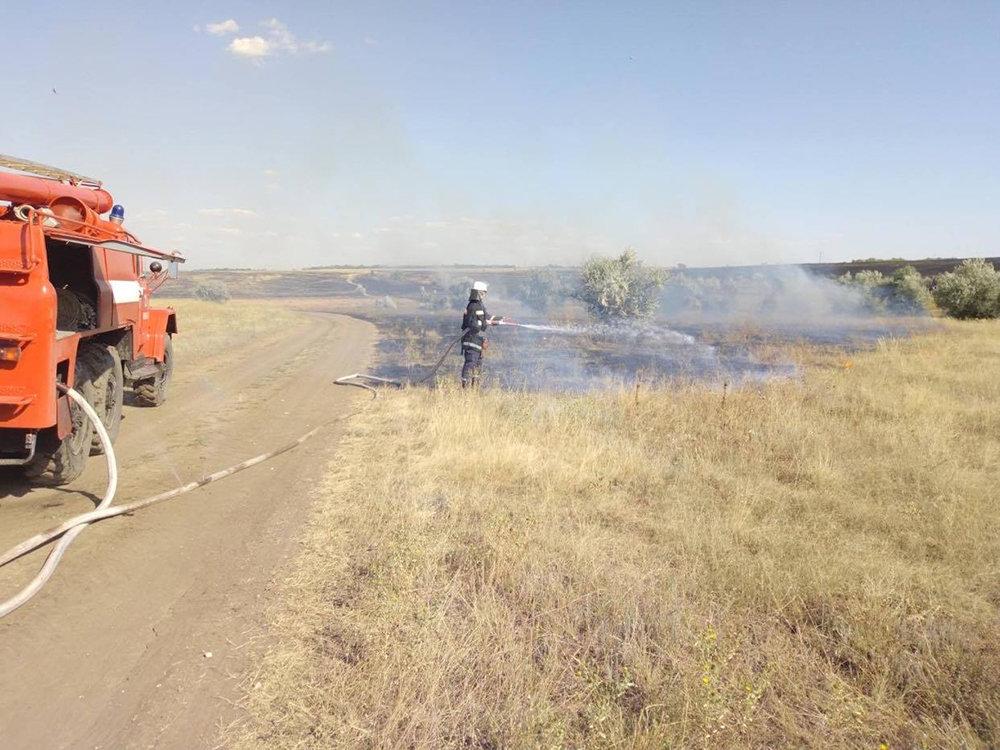 Массовые пожары на Николаевщине: причиной служит поджог, - ФОТО, фото-3