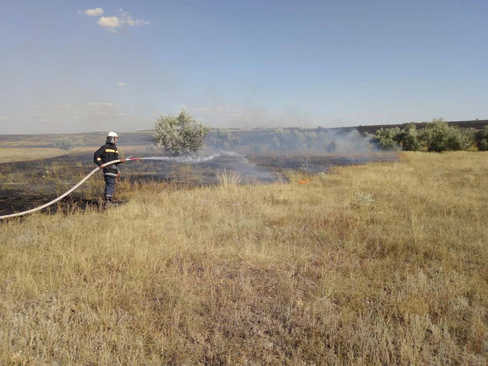 Массовые пожары на Николаевщине: причиной служит поджог, - ФОТО, фото-2