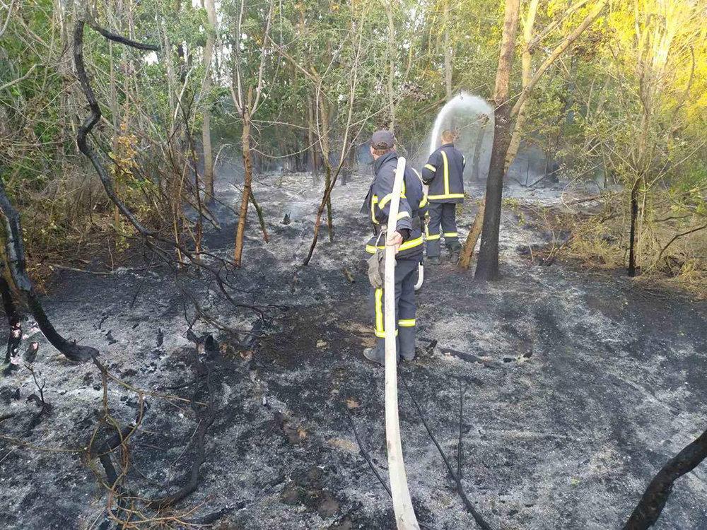 Массовые пожары на Николаевщине: причиной служит поджог, - ФОТО, фото-1