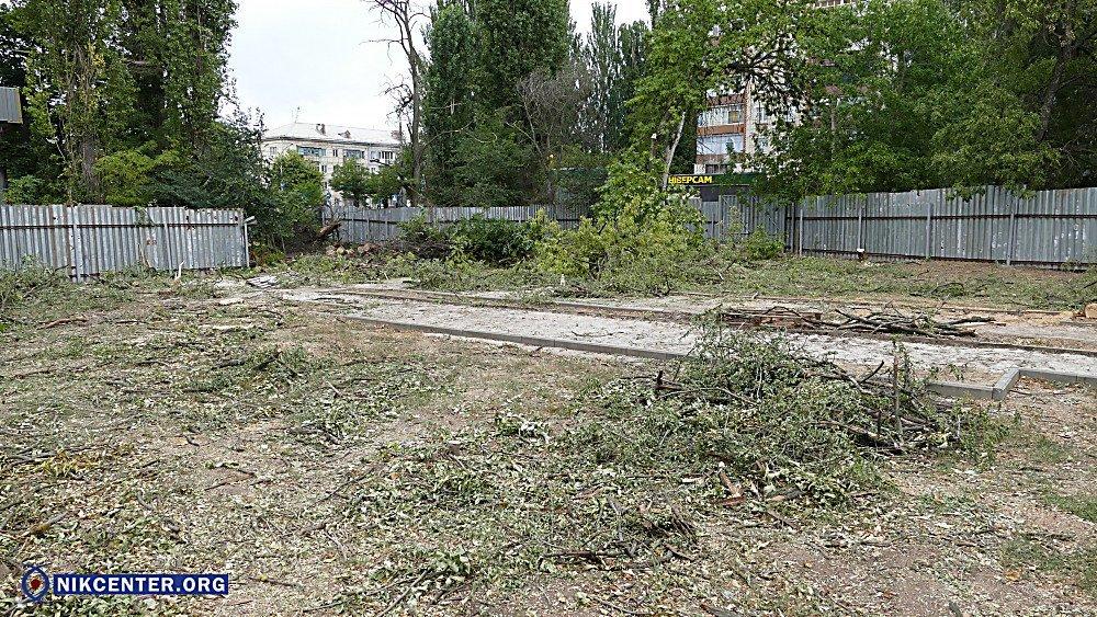 В Николаеве уничтожили 38 здоровых деревьев, чтобы освободить территорию для скейт-парка, - ФОТО, фото-1
