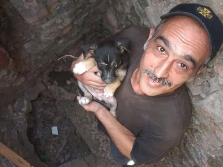 На Николаевщине спасатели достали из колодца щенка, - ФОТО, фото-3