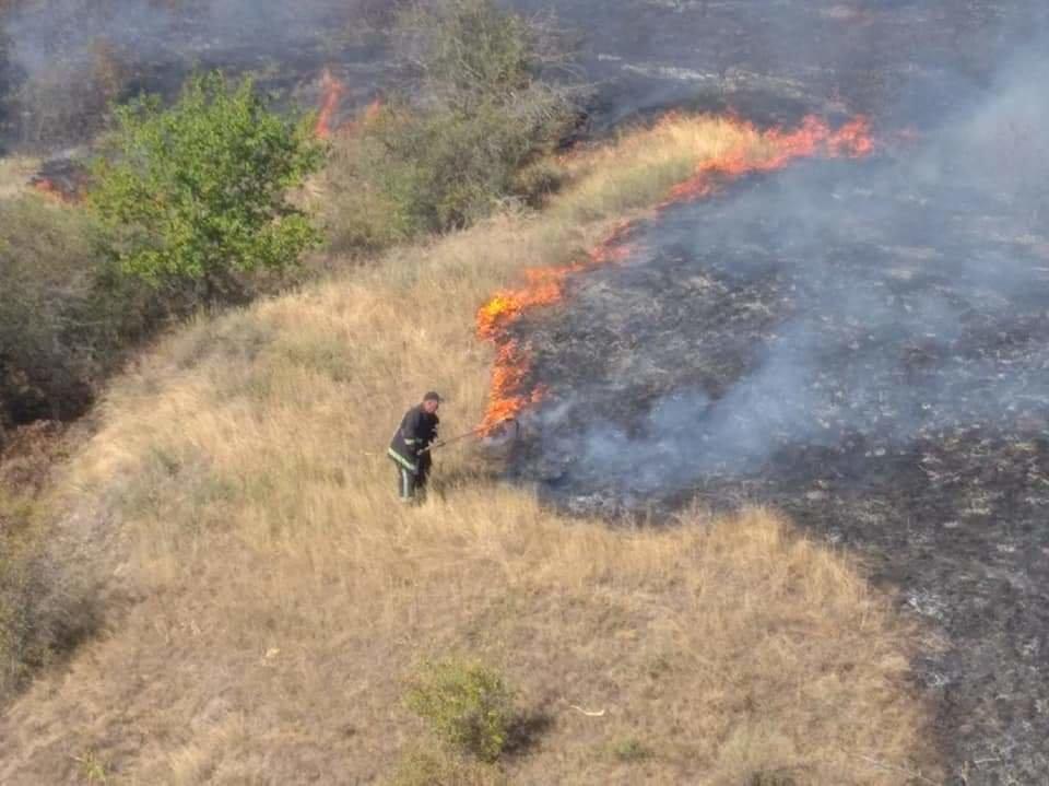 В Николаевской области горит сухая трава: огонь охватил 23 гектара, - ФОТО, фото-4