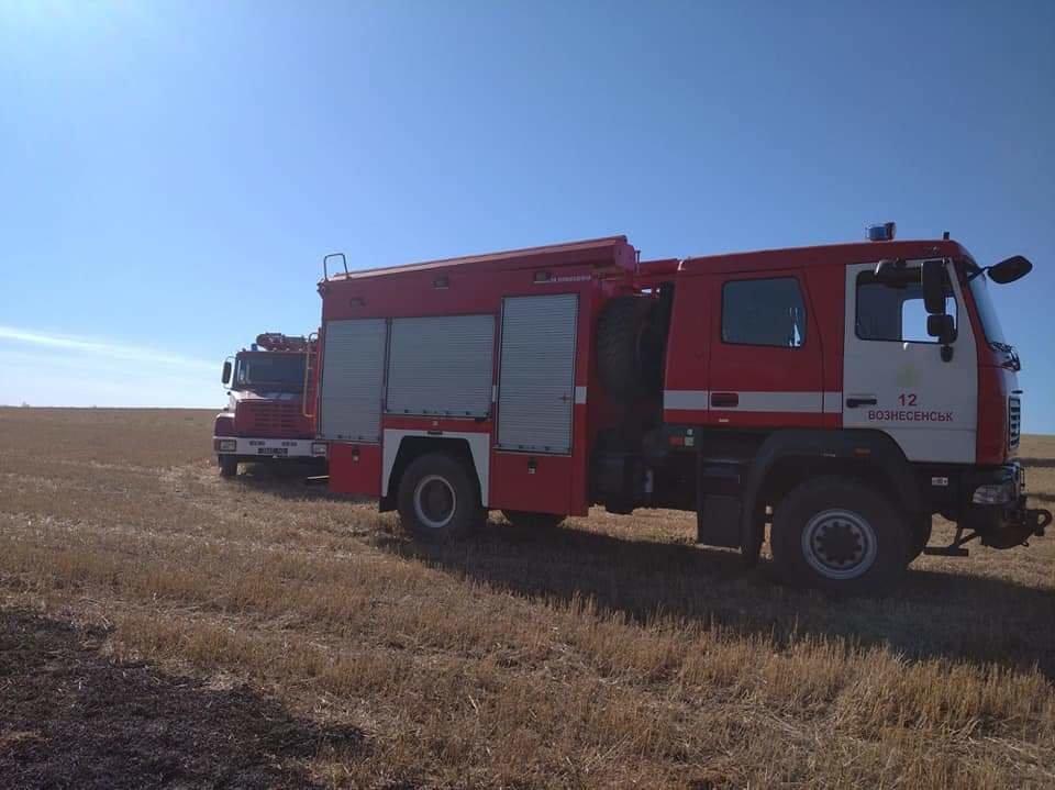В Николаевской области горит сухая трава: огонь охватил 23 гектара, - ФОТО, фото-3