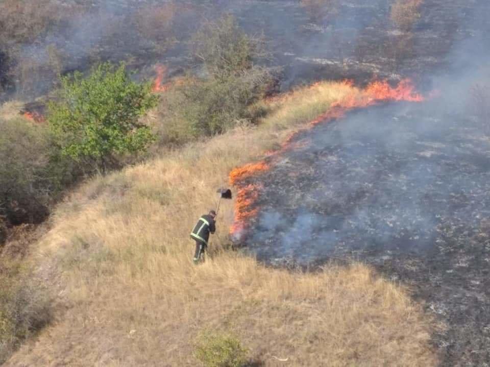 В Николаевской области горит сухая трава: огонь охватил 23 гектара, - ФОТО, фото-2