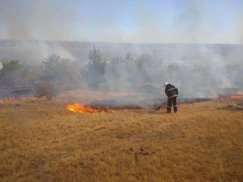 В Николаевской области горит сухая трава: огонь охватил 23 гектара, - ФОТО, фото-1