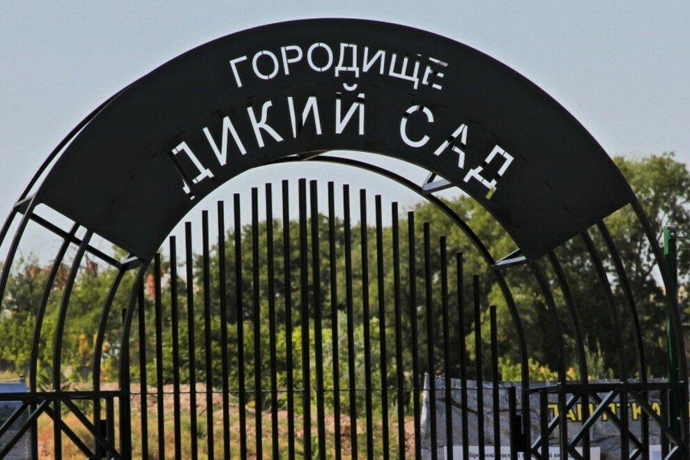 Древнее городище «Дикий сад»