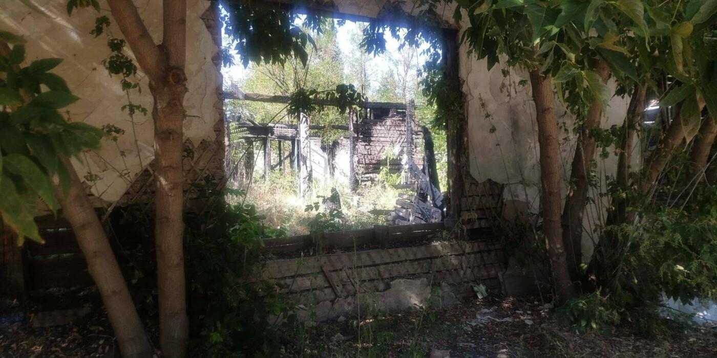 Николаевцы жалуются на разрушенные дома в историческом центре, - ФОТО, фото-3