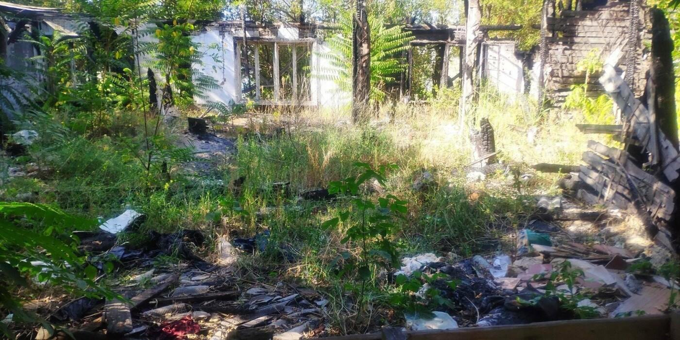 Николаевцы жалуются на разрушенные дома в историческом центре, - ФОТО, фото-2