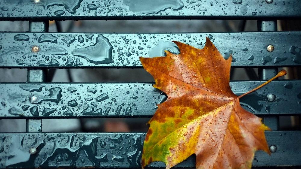 Прогноз погоды в Николаеве на 31 октября