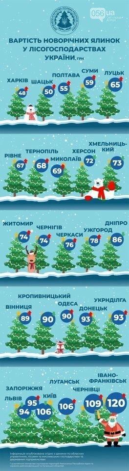 Сколько будет стоить новогодняя елка в Николаеве