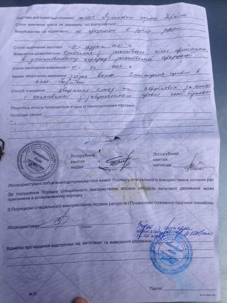Лесорубный билет, Вырубка деревьев в Матвеевке